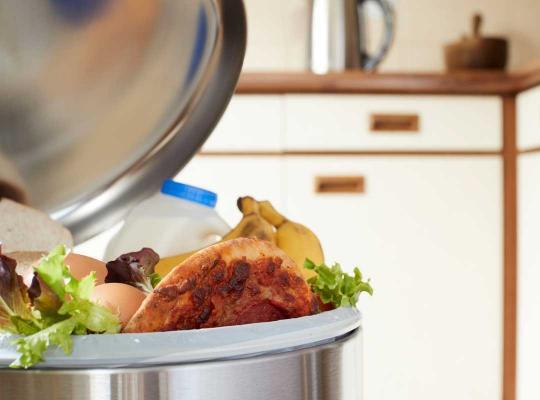 Voeding in vuilnisbak